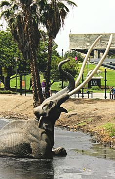 La Brea Tar Pits in Los Angeles | Editing Luke