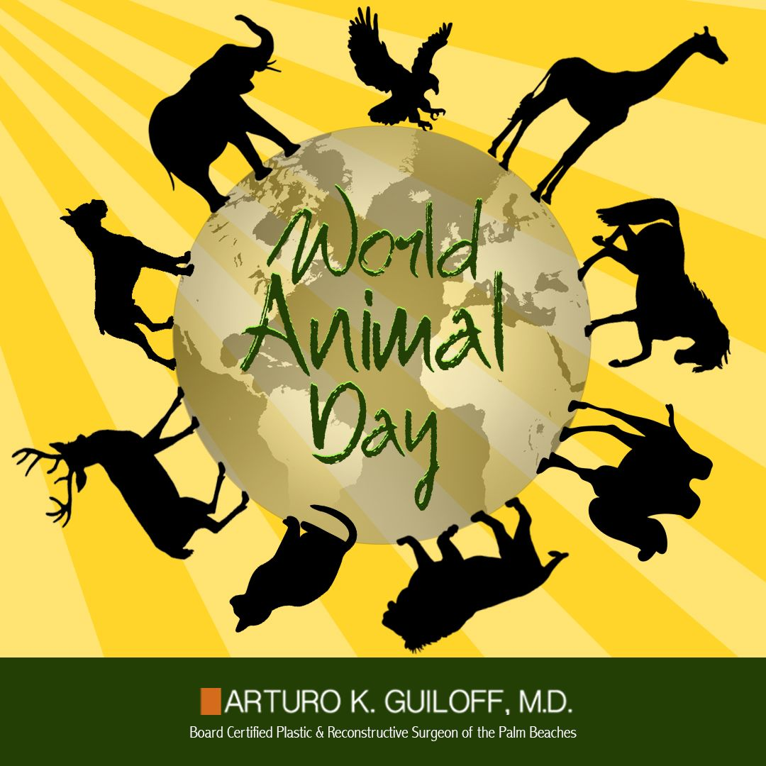 WORLD ANIMAL DAY October 4, 2020 Pet day, Animals of