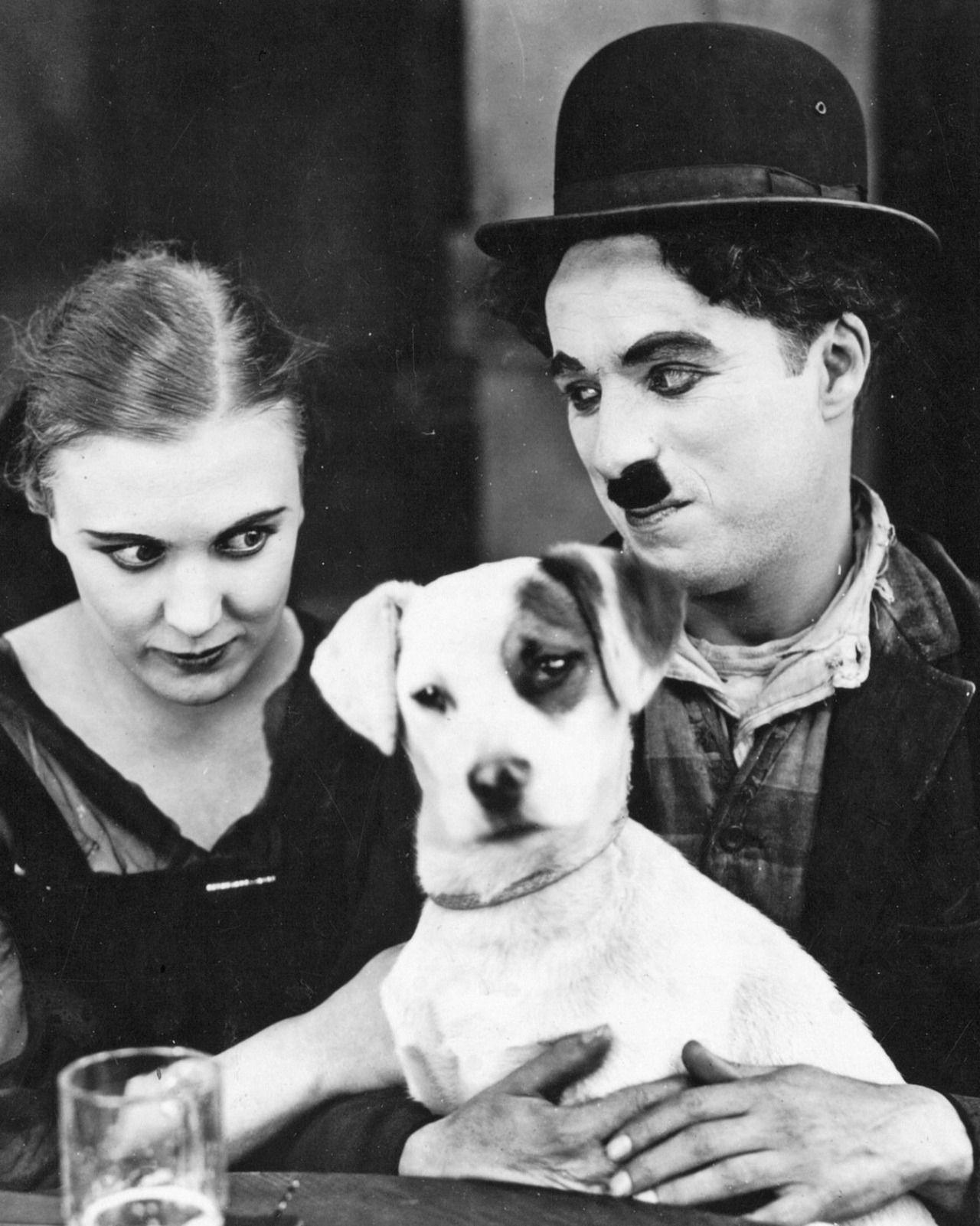2065cdd20a0 Edna Purviance   Charlie Chaplin - A dog s life