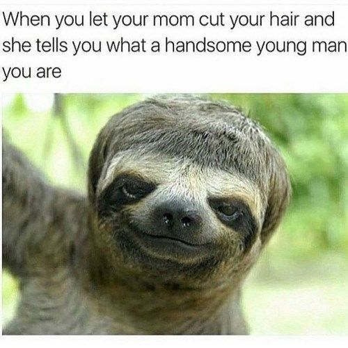 What A Handsome Young Man You Are! | Adorable!!!! | Funny
