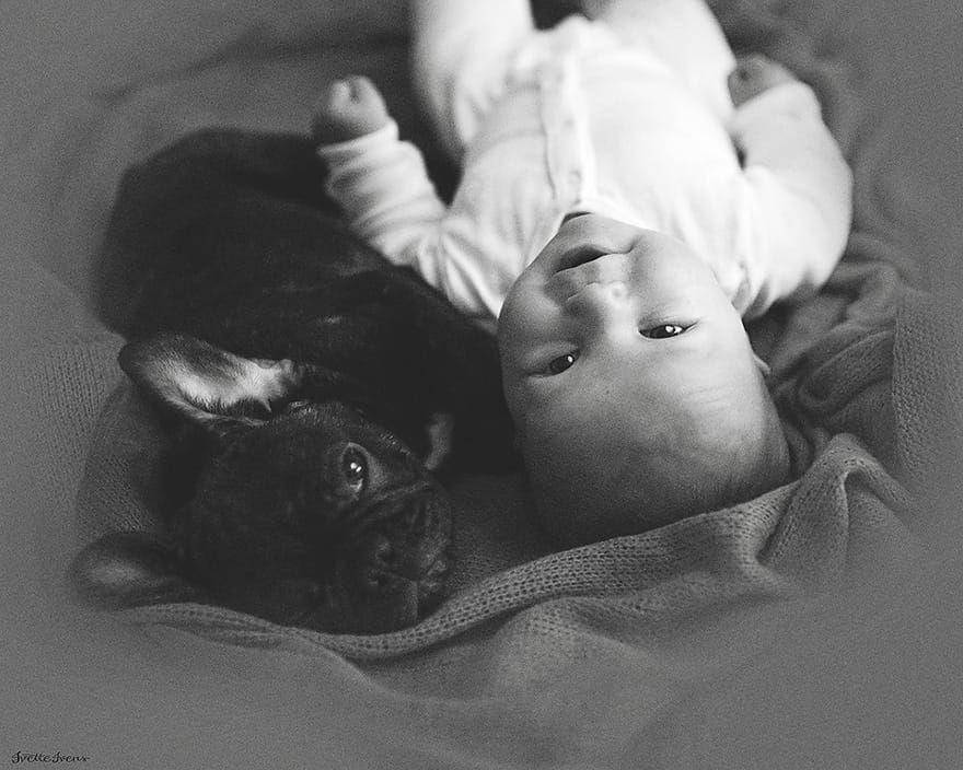 Best of Web Bebê e cachorro que nasceram no mesmo dia acham que são irmãos e fazem tudo juntos