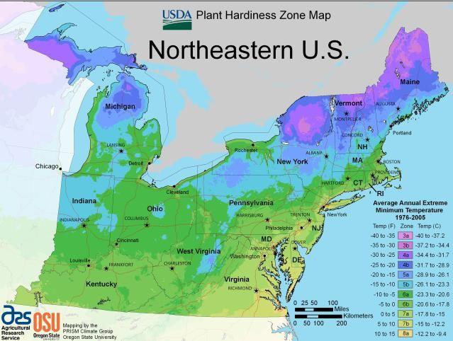 USDA Maps for Growing Zones   Not where it belongs   Gardening zones ...