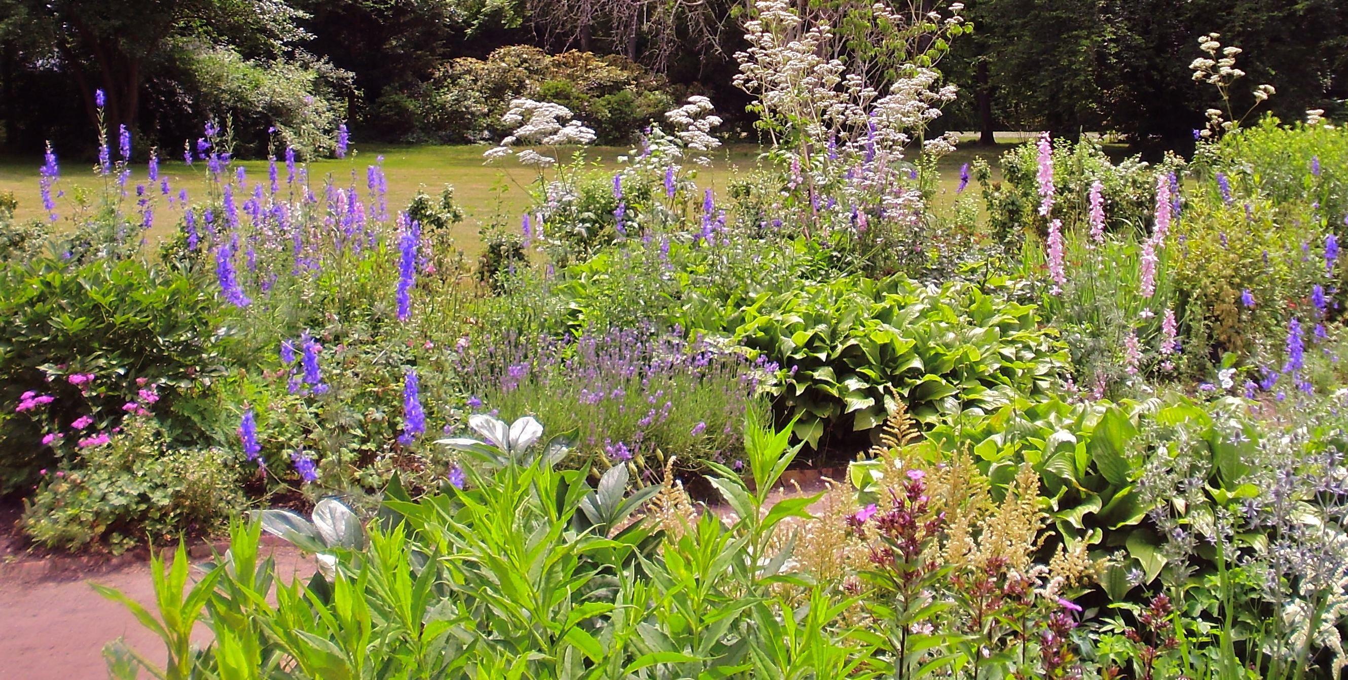 pollinator garden design google search