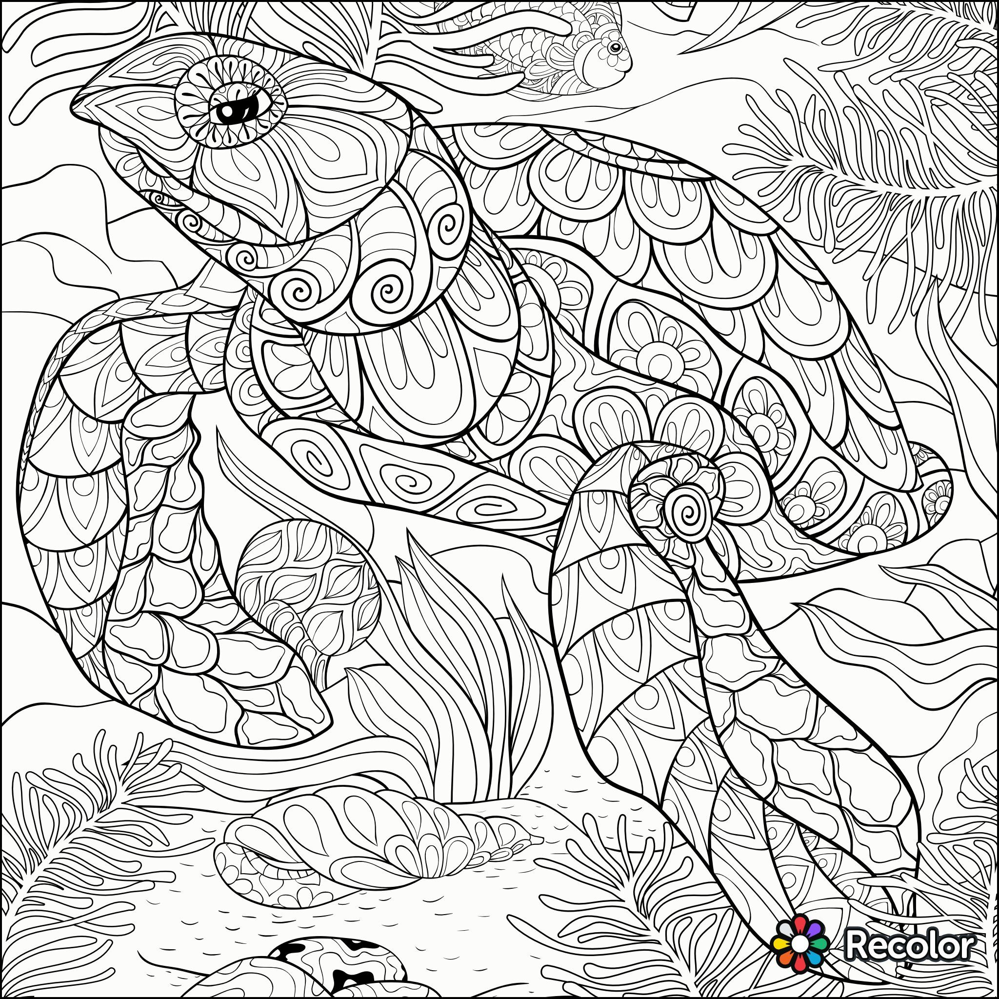 Turtle Coloring Page Recolor App Coloring Pages Coloring Pages