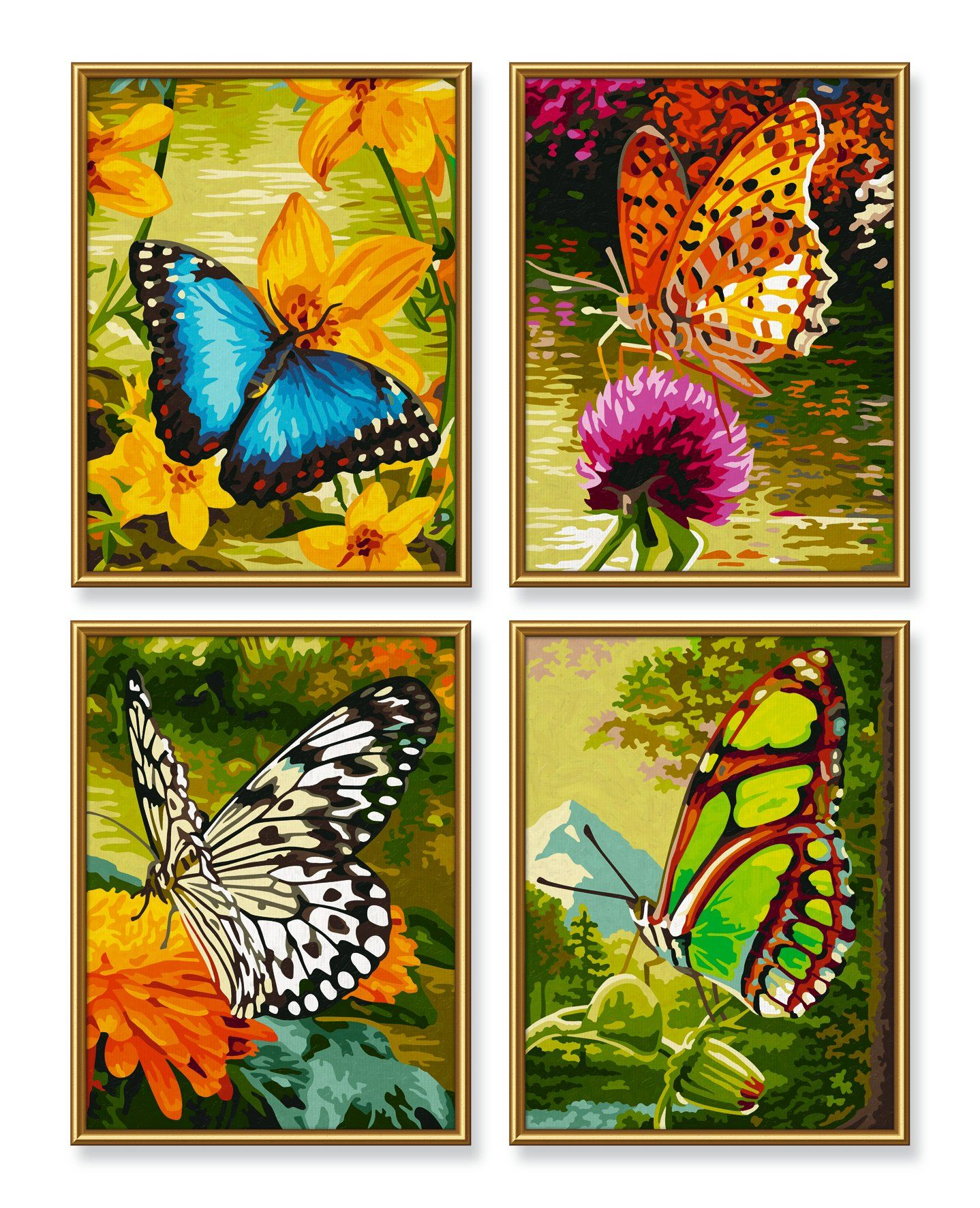 Schipper 609340628 Malen Nach Zahlen Schmetterlinge Quattro Je 18x24 Cm Amazon De Spielzeug Malen Nach Zahlen Idee Farbe Schmetterling Malen