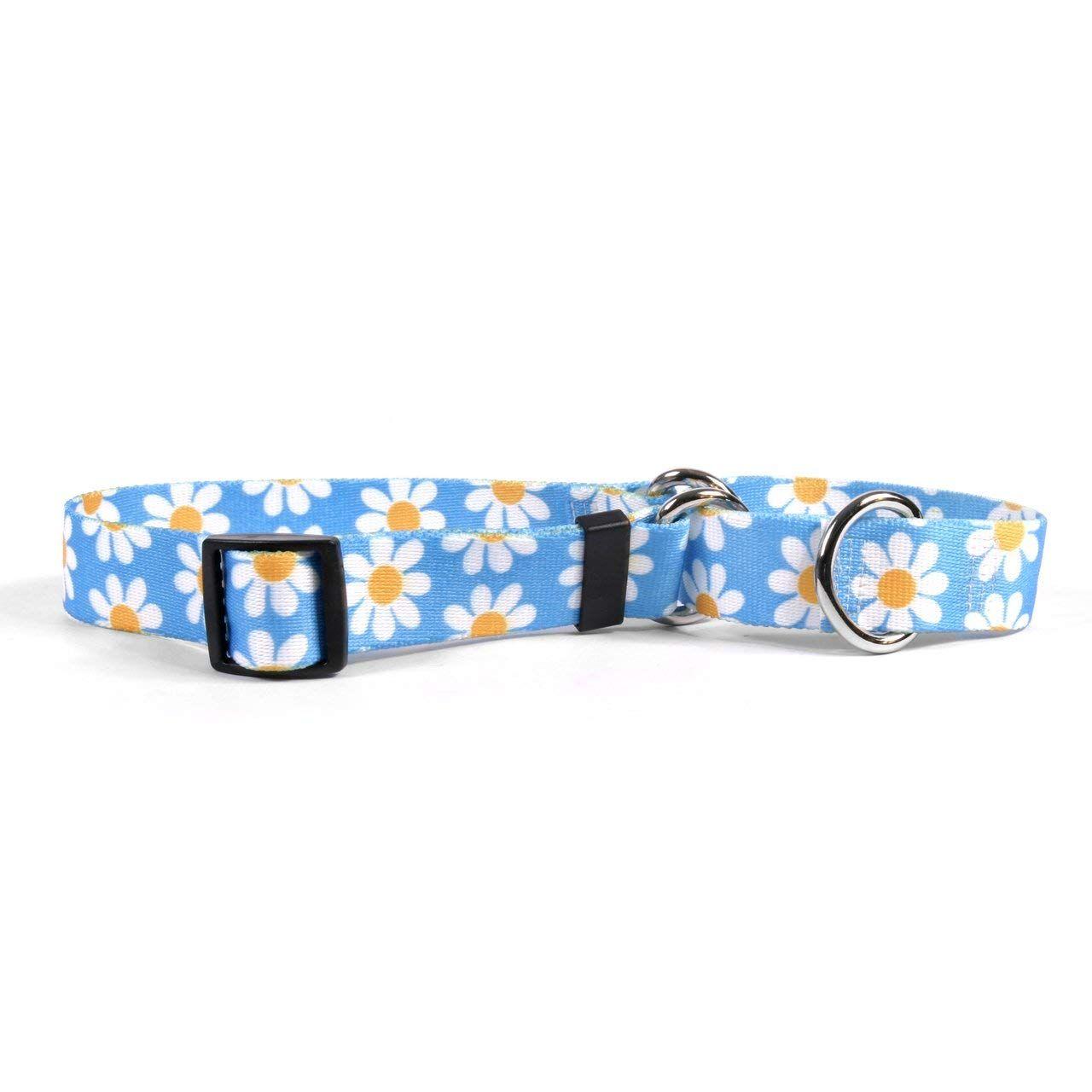 Yellow Dog Design Blue Daisy Dog Collar