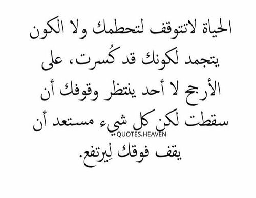Pin By Adel Elmetwally On كلمات Words Quotes Quotations Funny Quotes