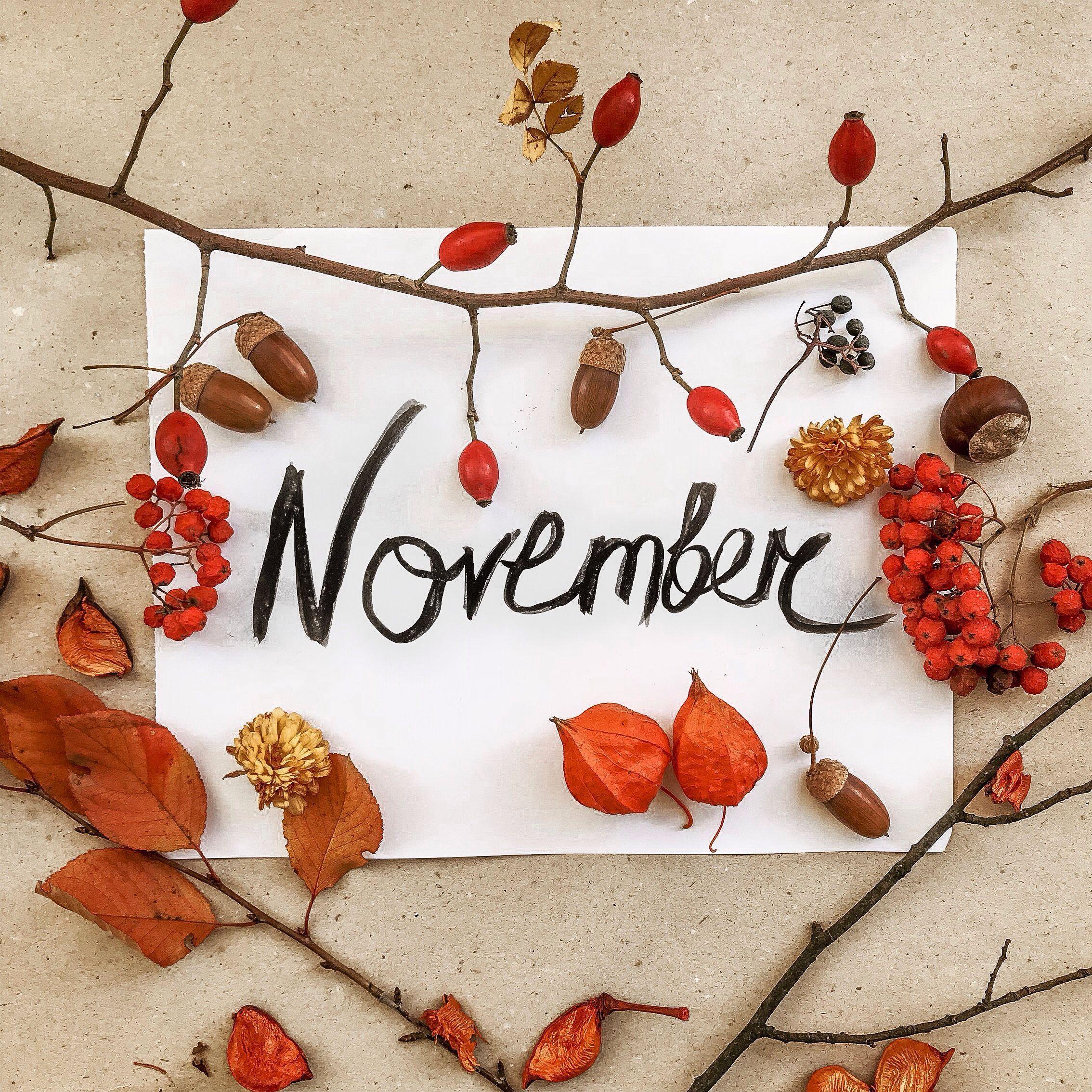 November hellonovemberwallpaper Hello november