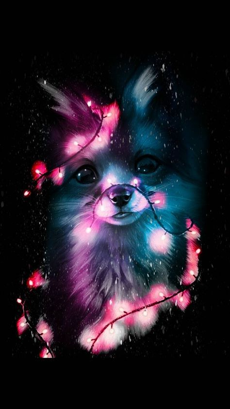 Cute Fox wallpaper by BradleyJohnsonTV - d5 - Free on ZEDGE™