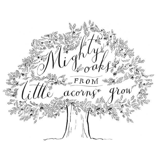 Great Oaks From Little Acorns Grow Google Search Tree Quotes Little Acorns Growing Quotes