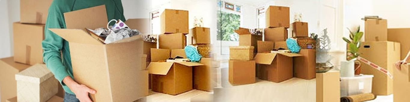 Cargo India movers are offering services for different find and