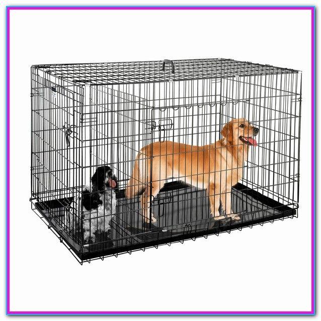 Big Dog Cages At Walmart Big Dog Cage Dog Cages Pet Crate