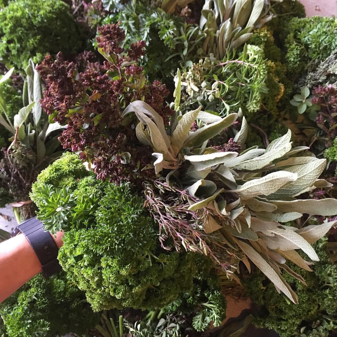 Thanksgiving herb bouquets for @citymarket104 tomorrow! Sage, thyme, oregano & parsley