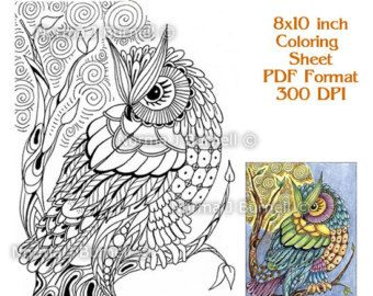 adult coloring book - Owl Coloring Book