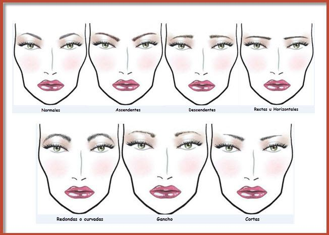 tipos de cejas Beauty Pinterest Make up - Tipos De Cejas