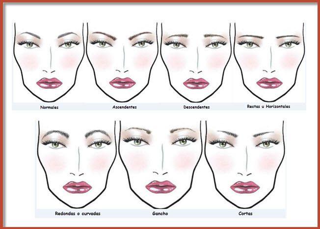 tipos de cejas Good Pinterest Makeup - tipos de cejas