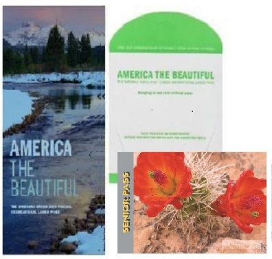 One Stop Shop For All Your Maps World United States State Wall Decor Historic Planetary Topographic Trail National Park Pass National Parks Time Travel