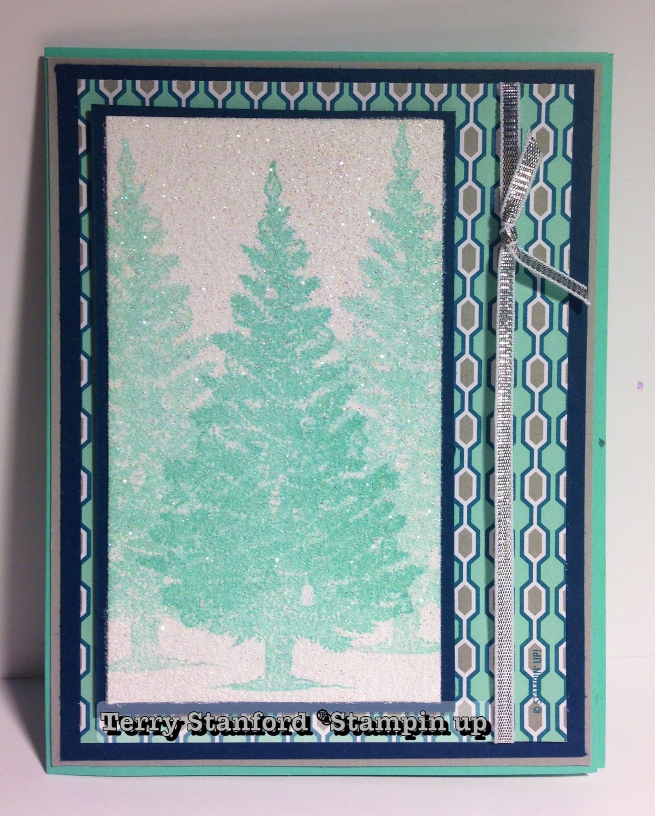 2013 Stampin Up Convention Swap.