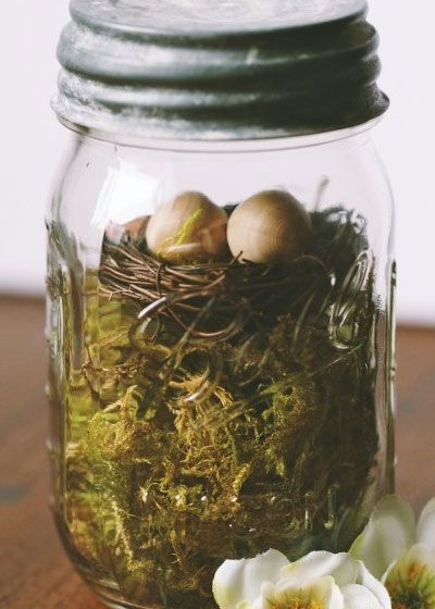 Click pic for 40 easter gifts in a jar moss and birds nest click pic for 40 easter gifts in a jar moss and birds nest homemade negle Image collections