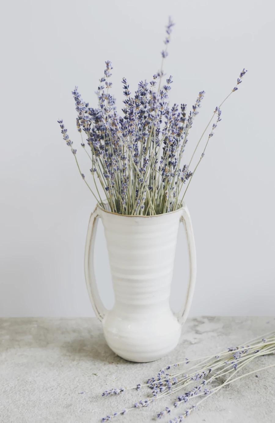 Farmhouse Ceramic Flower Vase With Handles 7 75 Tall Dried Flowers Dried Flower Arrangements Flower Vases