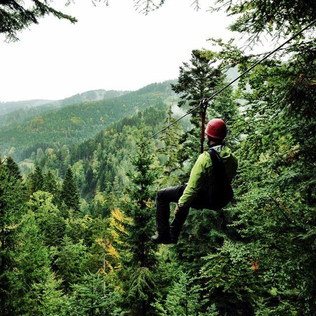 Ziplining In The Black Forest Germany Pommie Travels Black Forest Germany Black Forest Ziplining