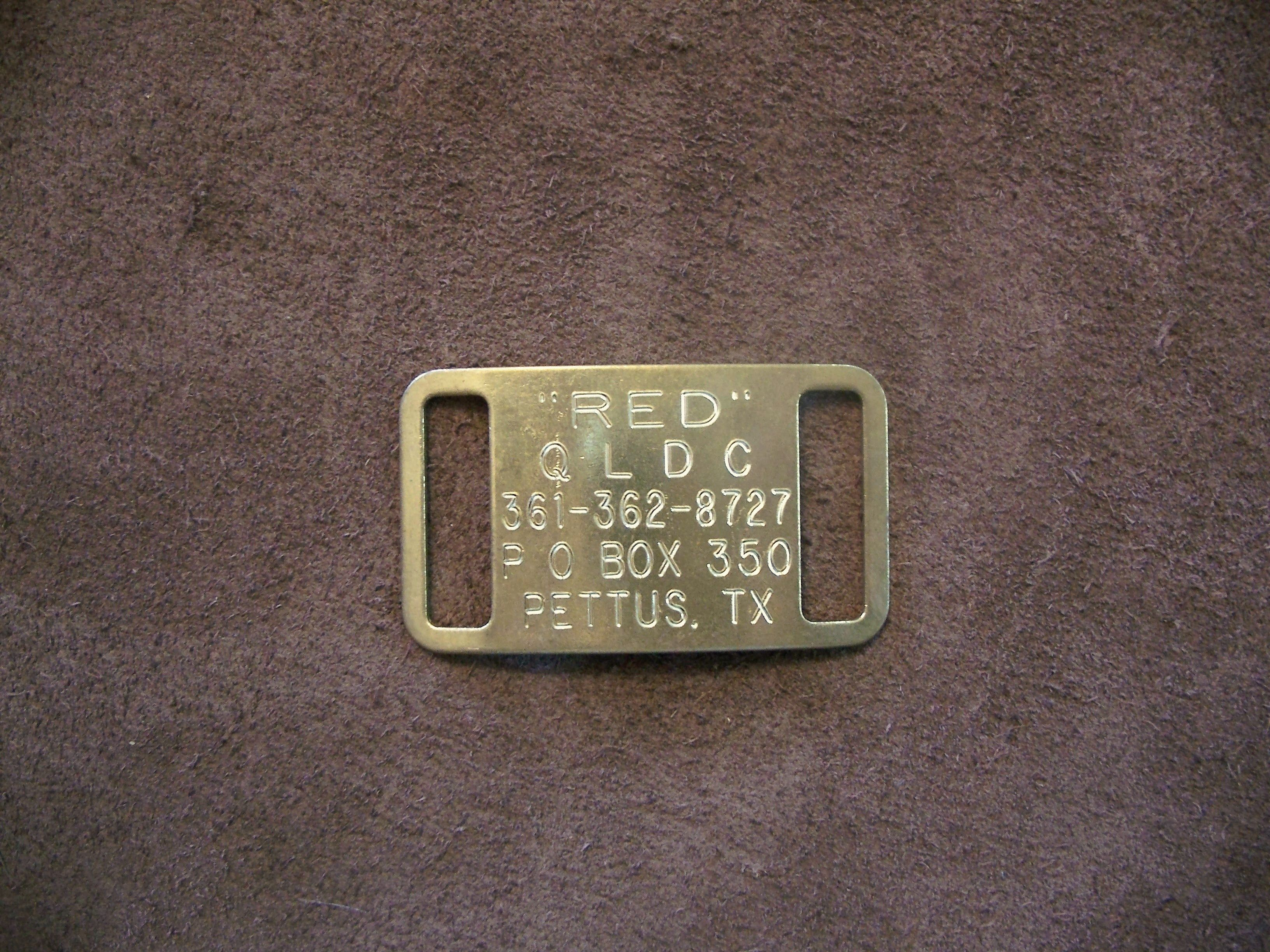 Brass Slide On Collar Tag!