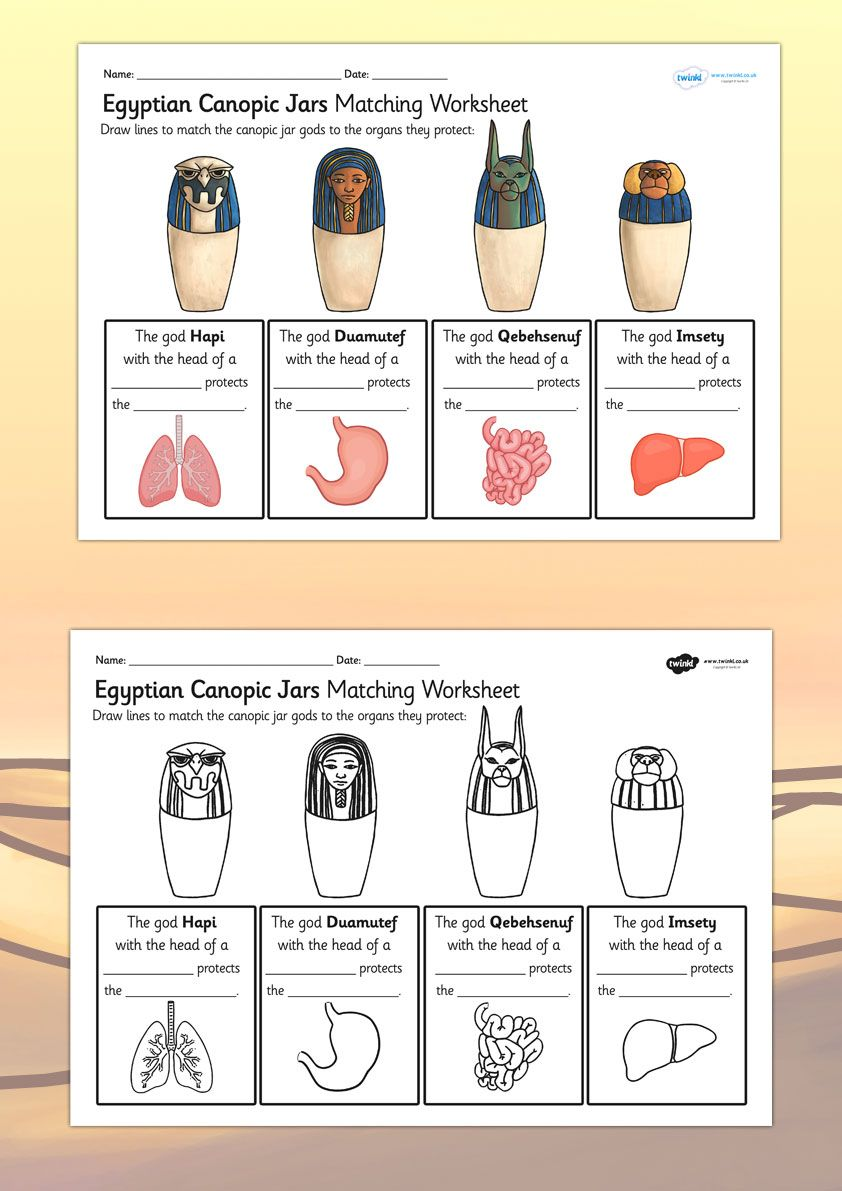 KS2 Ancient Egypt- Canopic Jars Organs Worksheet   Ancient Egypt ...