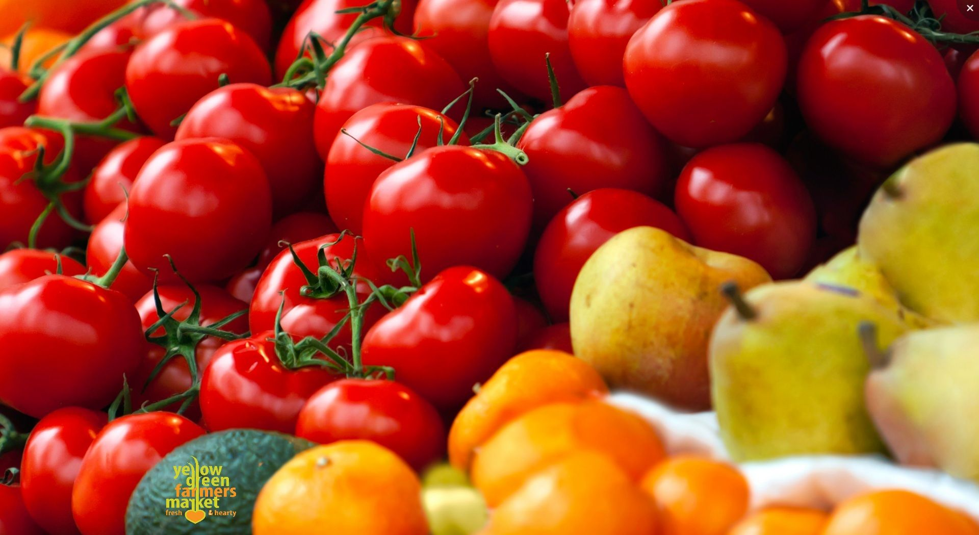 We are a farmers market in Hollywood Florida.