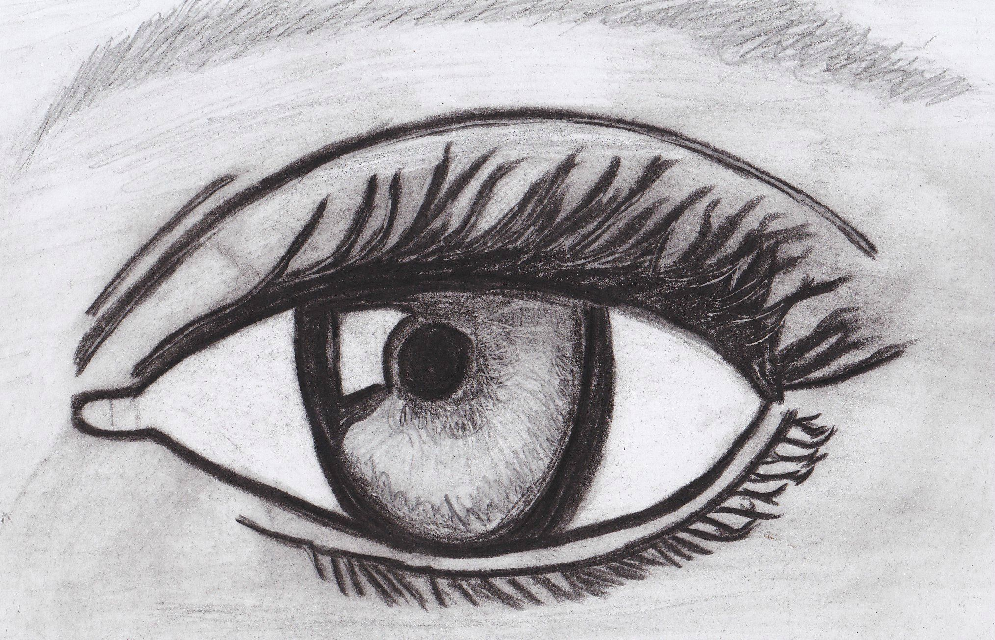 Marvelous Dessin Facile Et Beau 10 Comment Dessiner Un Nounours Eyes
