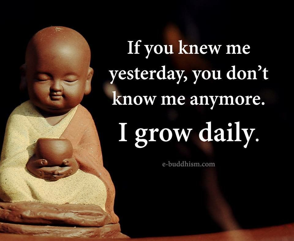 If You Knew Me Yesterday You Dont Know Me Anymore I Grow Daily