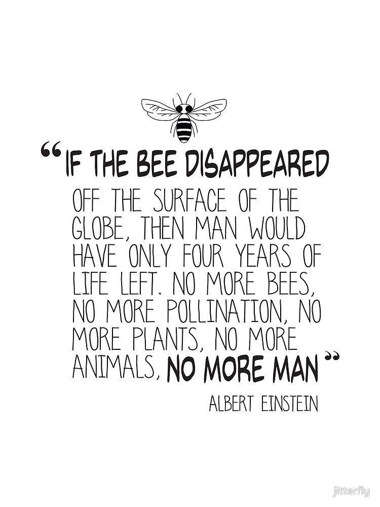 If The Bee Disappeared Albert Einstein Quote By Jitterfly