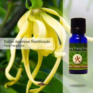 Ylang Ylang Extra _ Essential Oils