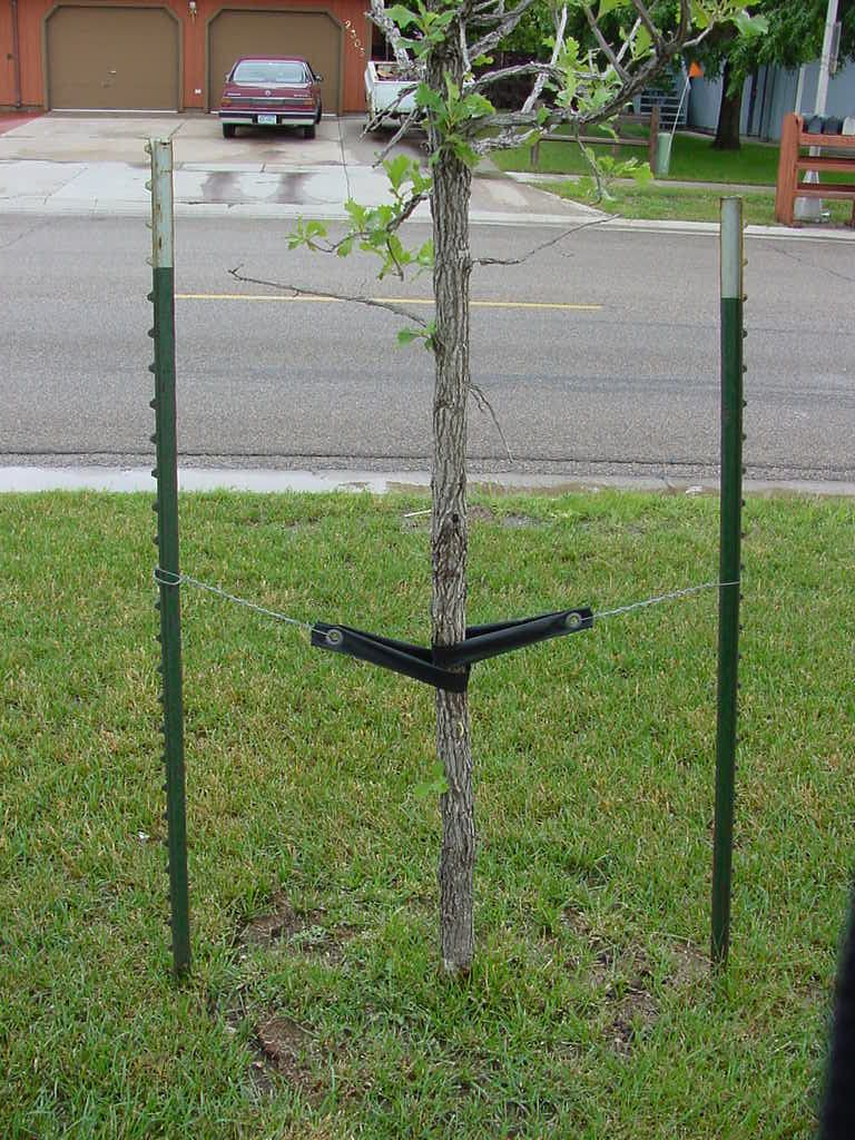 tree support stakes sign google 검색 지지대 pinterest tree