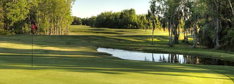 35++ Best golf in tampa bay information