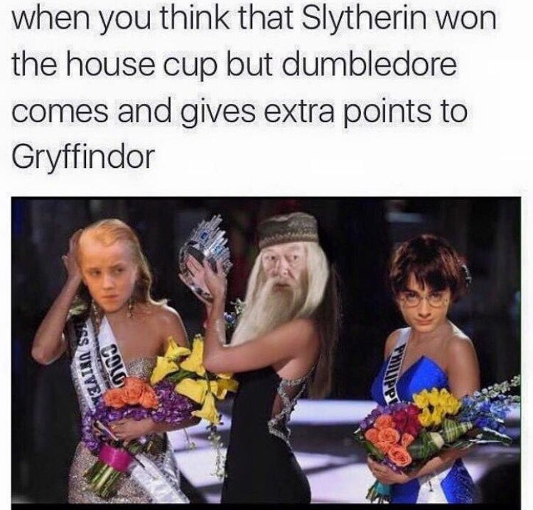 When You Think That Slytherin Won The House Cup But Dumbledore Comes And Gives Extra Points To Gryffi In 2020 Harry Potter Jokes Harry Potter Spells Harry Potter Memes
