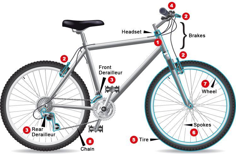 Your Bike Tune Up Checklist Bike Bicycle Schwinn Bike