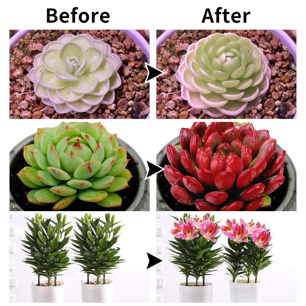 Grow Lamp Bulbs Plant Lights Full Spectrum Useful Tools Store Planting Bulbs Plant Lighting Plants