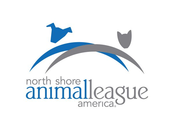 Welcome To The Official Tumblr Page Of North Shore Animal League The World S Largest No Kill Rescue Animal League Pet Life Animal Rescue