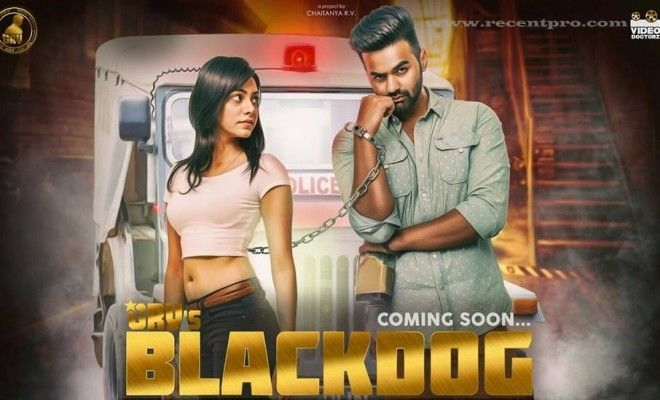 Black dog grv download mp3