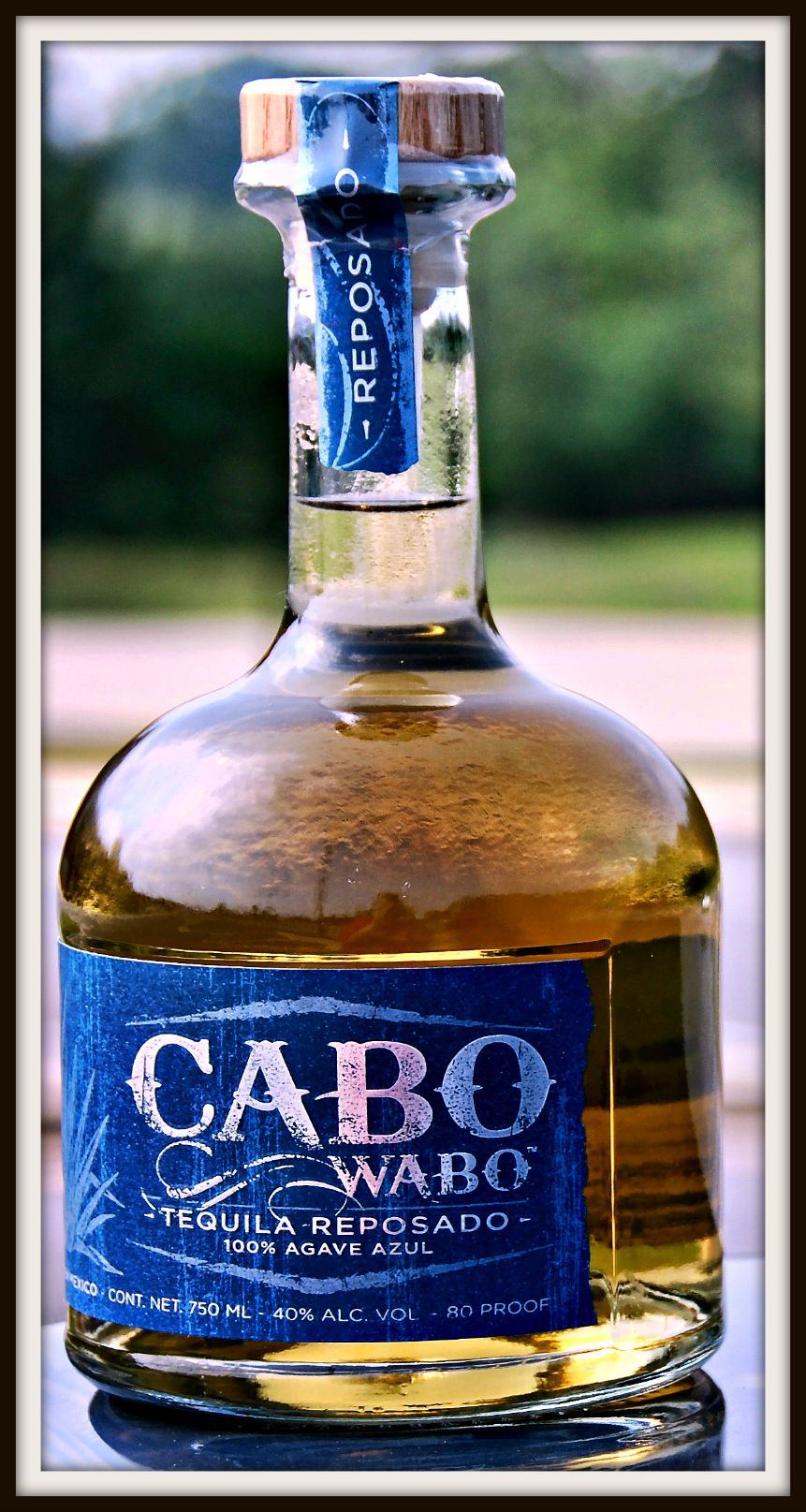 Cabo Wabo Is It Saturday Yet Cabo Wines Red Rocker