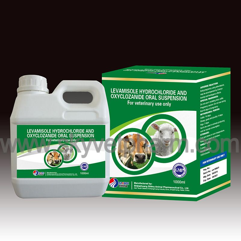 Levamisole Hydrochloride and Oxyclozanide Oral Suspension INDICATION
