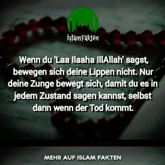 Islam Fakten Facebook