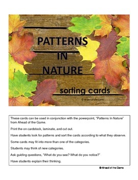 patterns in nature sorting cards kindergarten math patterns in nature sorting activities. Black Bedroom Furniture Sets. Home Design Ideas
