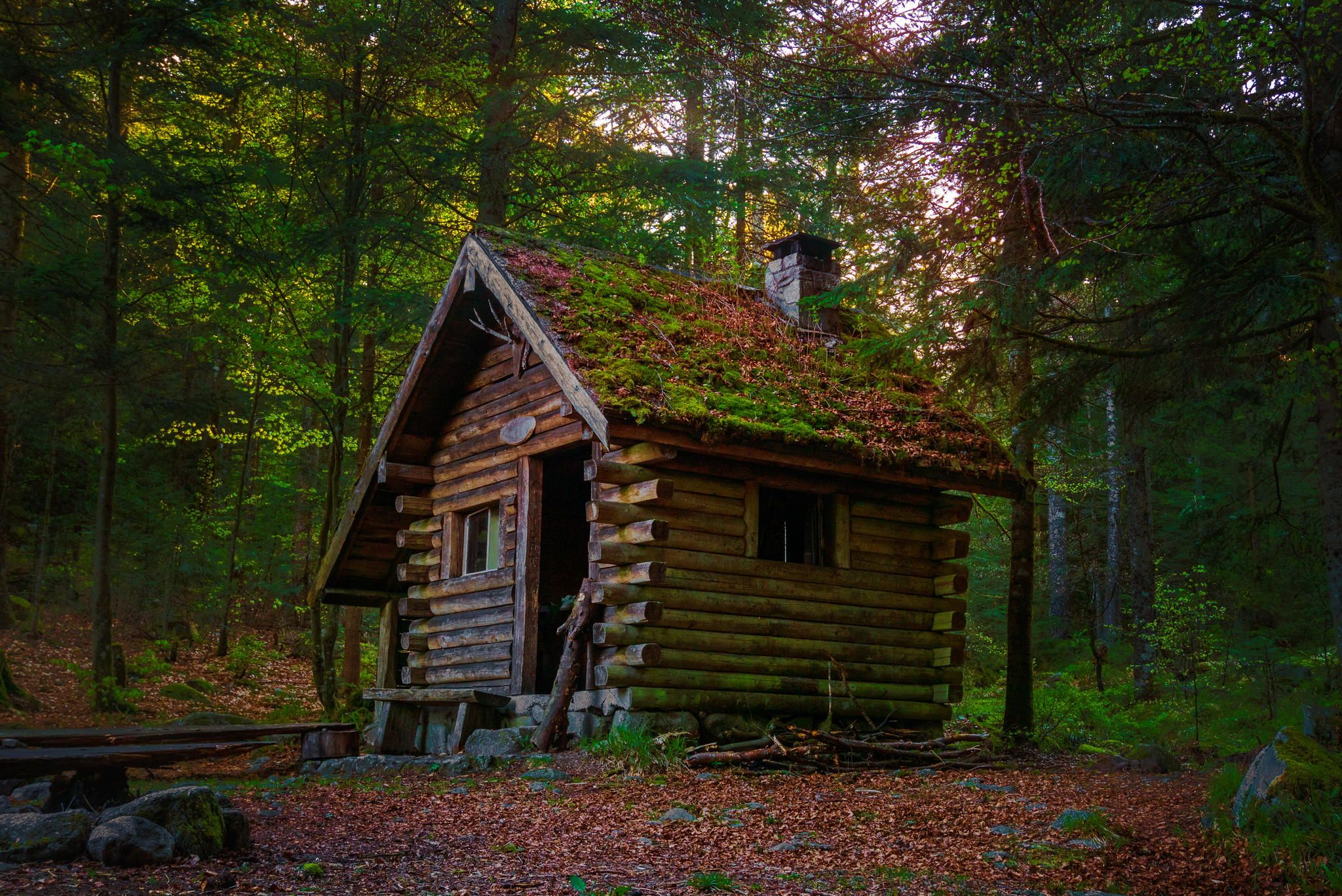 Wooden House In Forest By Binary Mind On 500px Cabins In The