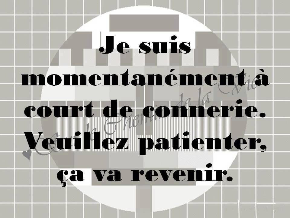 Préférence Caractère | my way of life | Pinterest | Citation, Mots et Drôle WX88