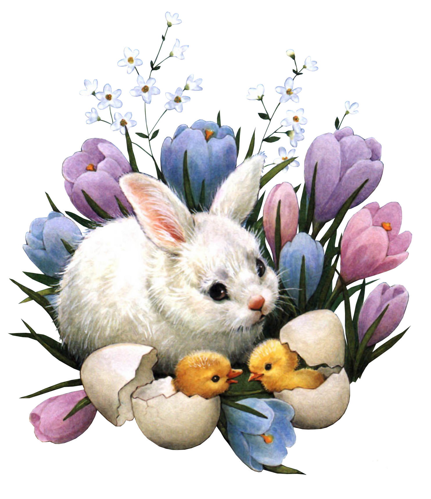 Поздравительная открытка кролика, божественные картинки пожеланиями