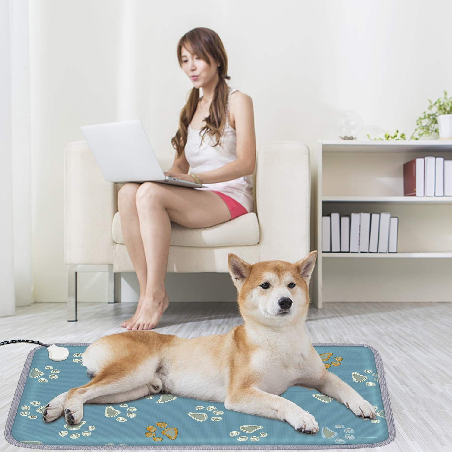 Pin On Pet Wellbeing