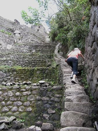 The Steepest Narrowest Stairs On Huayna Picchu Near Of