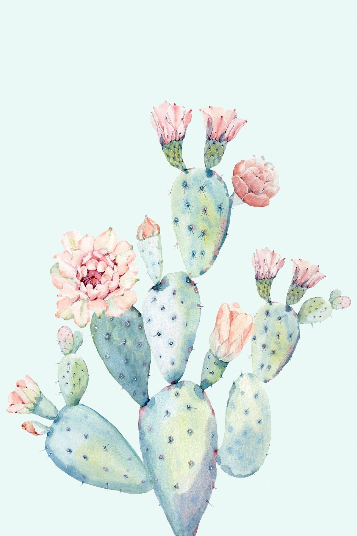 Photo of Cactus 2 Wallpaper