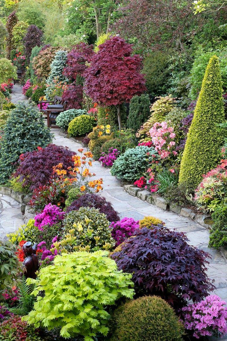 allées de jardin en pierre naturelle, plantes, arbustes, fleurs et ...